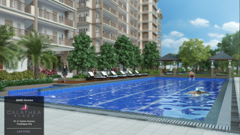Calathea Place Swimming pool 1